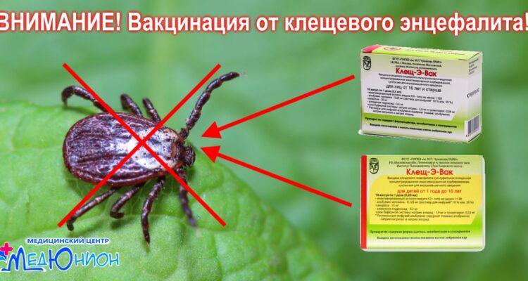 Проведение вакцинации от вируса клещевого энцефалита МЦ МедЮнион
